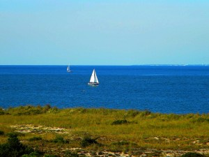 Sail Boat by Lee Cannon via Flickr