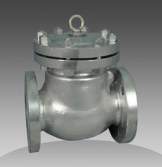 series 45 check valve