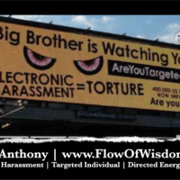 Electronic Harassment - 'Targeted Individual' Richard Cain Hour One