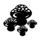 Demo Cogumelos