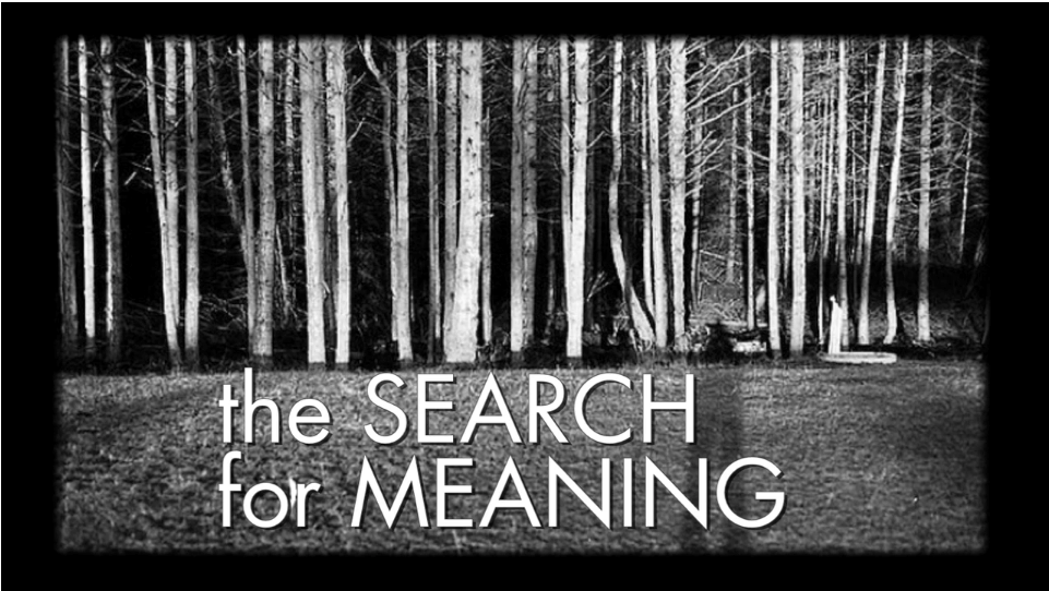 ftf-scion-search4meaning