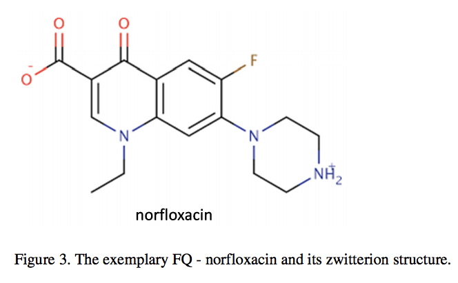 Fluoroquinolone Toxicity Article – Treatment of the Fluoroquinolone Associated Disability – the pathobiochemical implications
