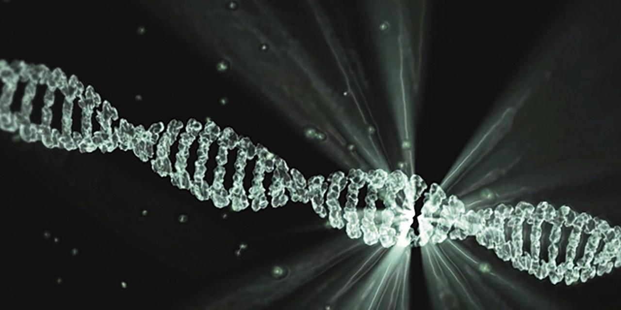 MTHFR Genetic Mutations and Fluoroquinolone Toxicity