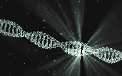 Fluoroquinolone Induced Gene Upregulation and ROS