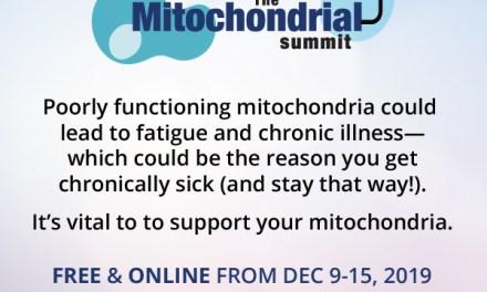 Mitochondria Summit