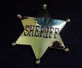 Pin, Sheriff's badge (Western)