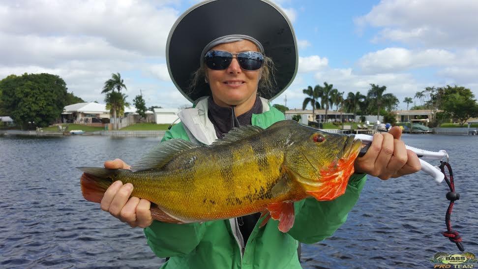 Lake Ida Peacock Bass fishing