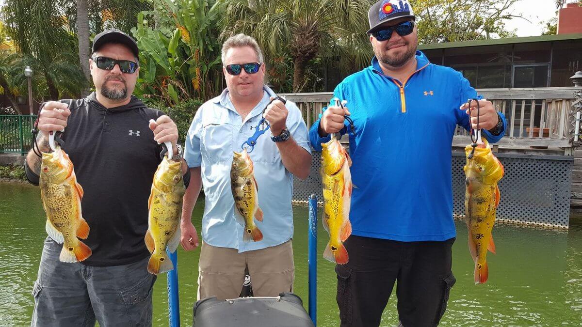 Colorado Natives Fishing Peacock Bass Blue Lagoon South Florida
