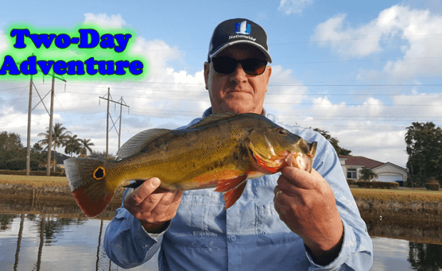 Miami Peacock Bass Fishing Adventure