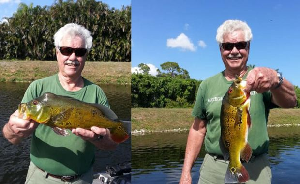 March Lake Ida Florida Bass Fishing