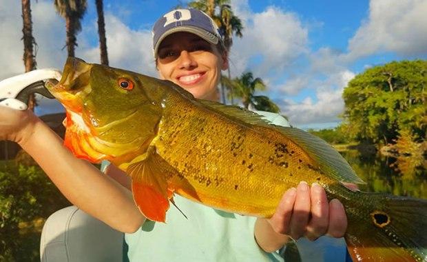https://bassonline.com/2018/06/june-trophy-peacock-bass-fishing/