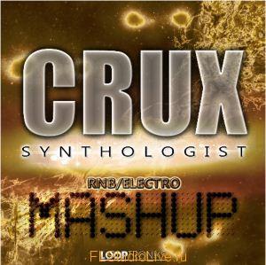 Looptroniks - Crux Synthologist RnB Electro Mashup для FL Studio