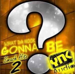 Сэмплы YnK Audio What Da Hook Gonna Be Smash Hitz 2 для FL Studio