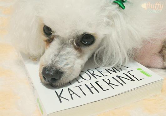 resenha do livro O Teorema Katherine