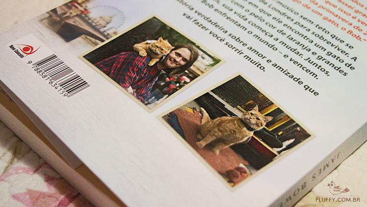 resenha do livro bob um gato de rua fora do normal james bowen