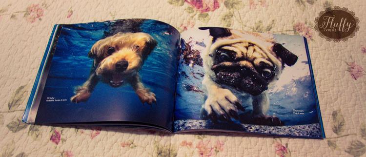resenha do livro Cachorros Submarinos