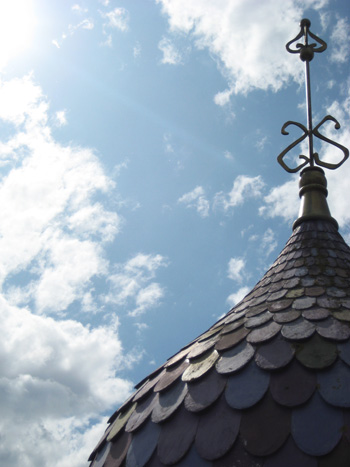 disneyland roof