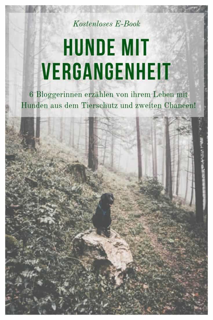 hunde-mit-vergangenheit-ebook