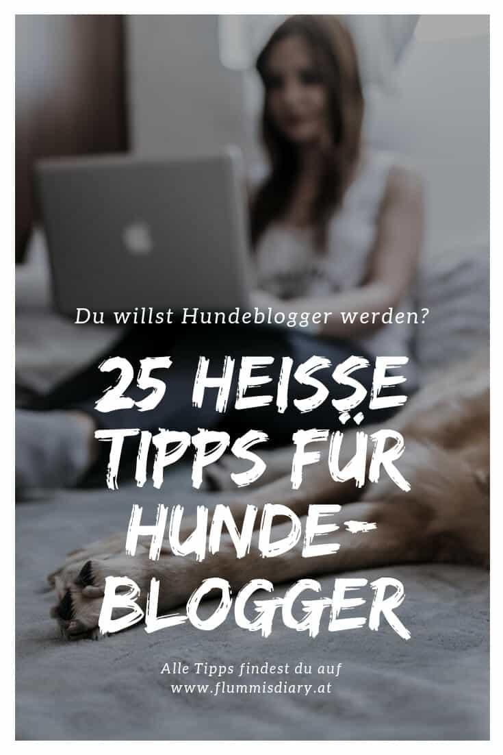 hundeblogger-werden-flummisdiary