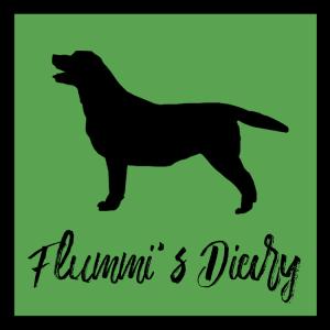 Thumbnail-Bild-2019-flummis-diary