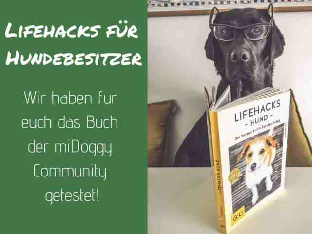 lifehacks-hund-buch