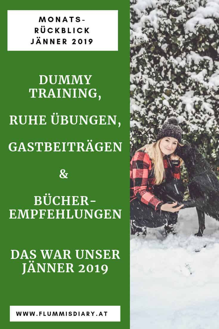 monatsrückblick-januar-2019-hundeblog-hundetraining