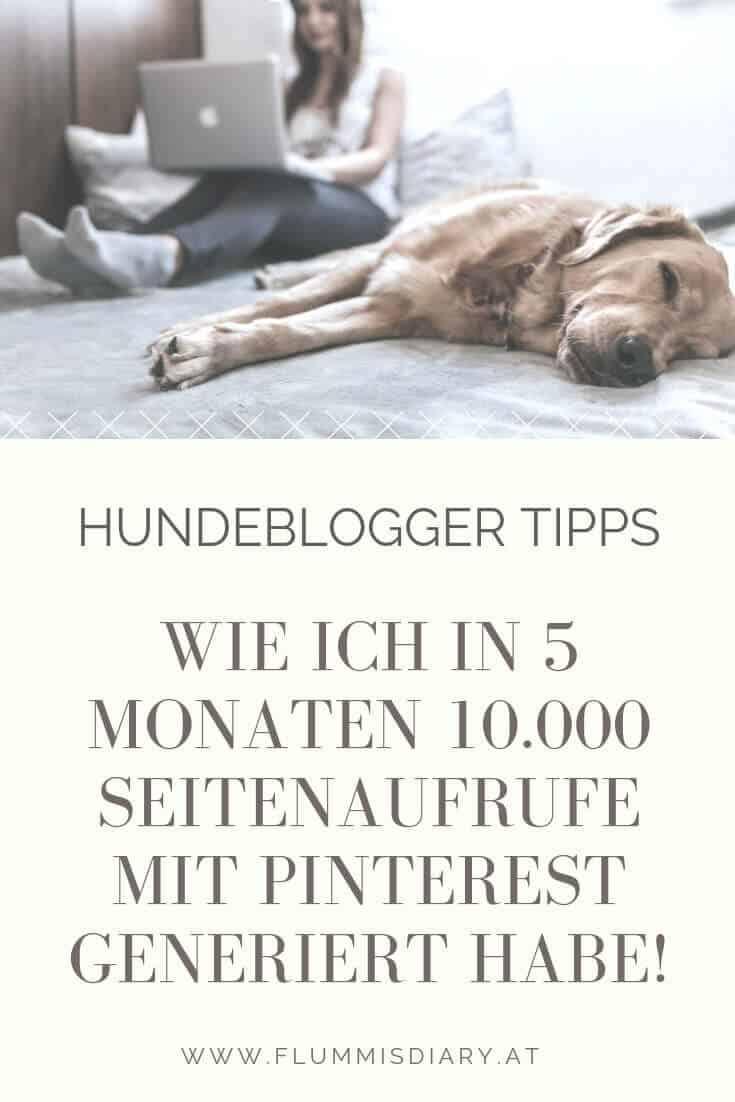 tipps-hunde-blogger-pinterest