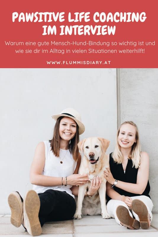 pinterest-mensch-hund-bindung