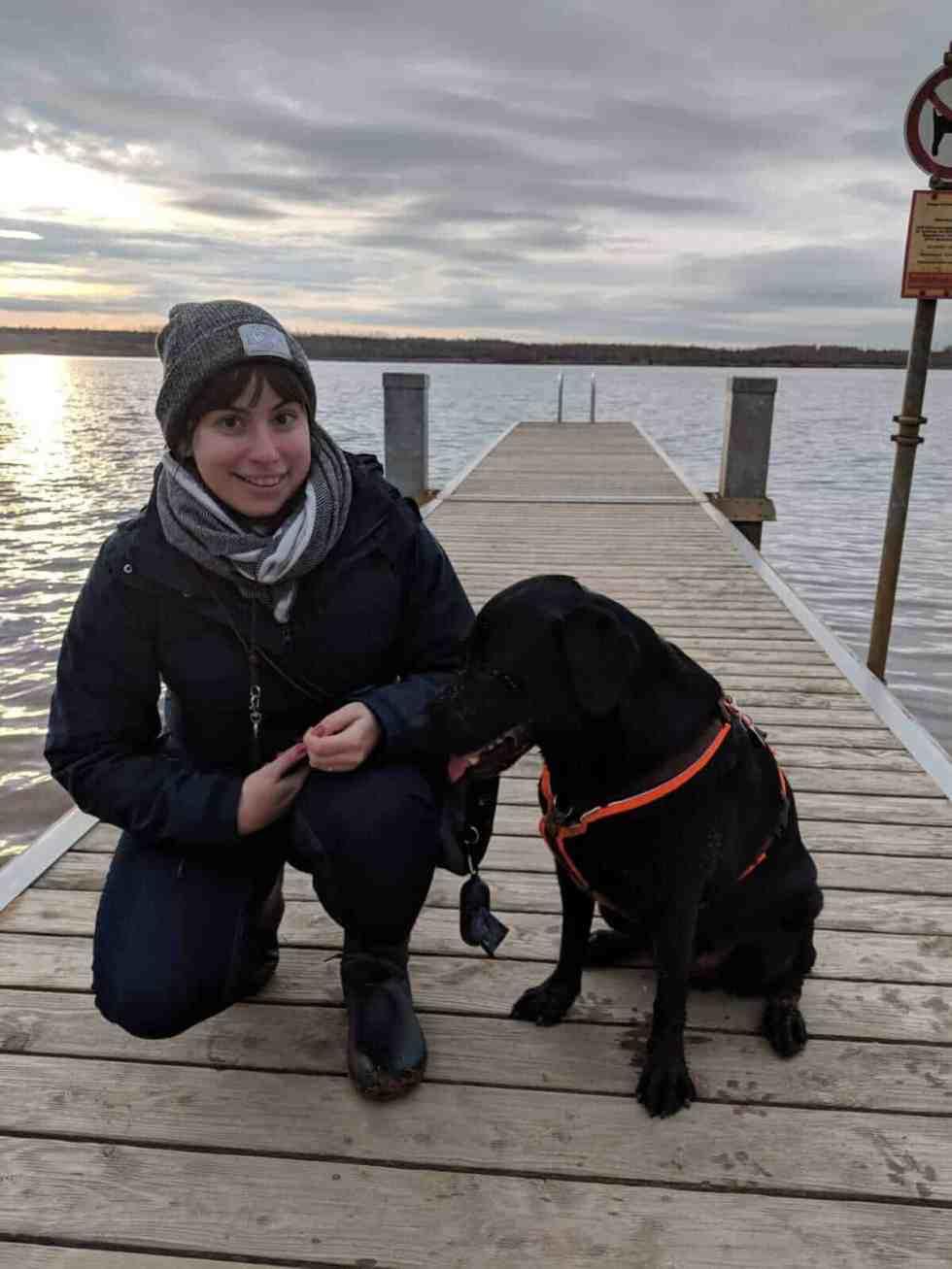 loki-labrador-vollzeitjob-hund-interview