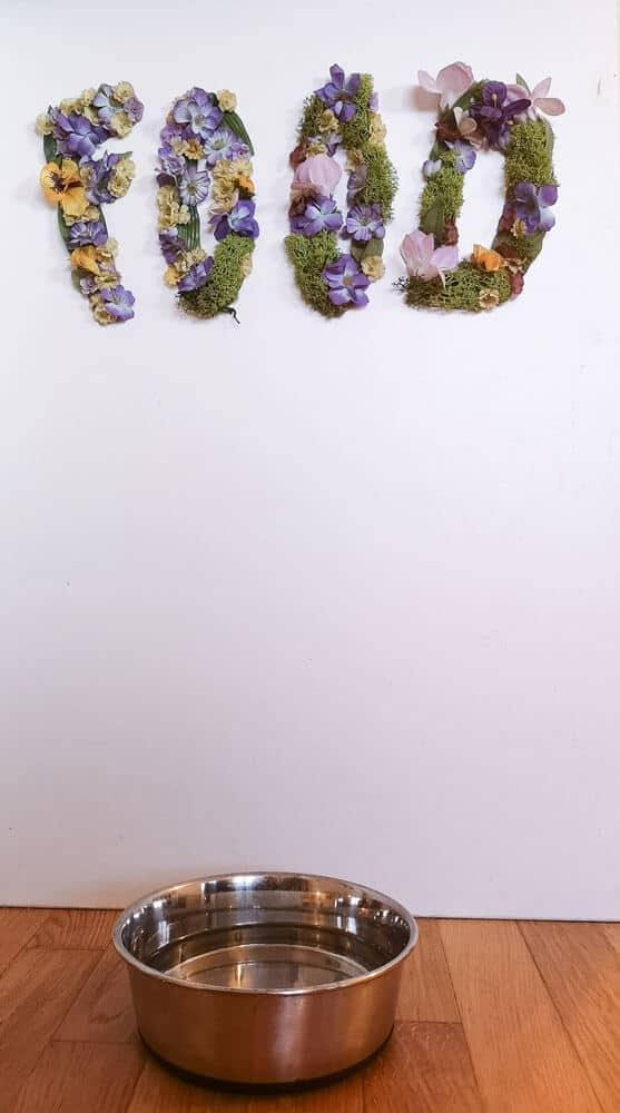 futterstation-hund-floral-letters-diy