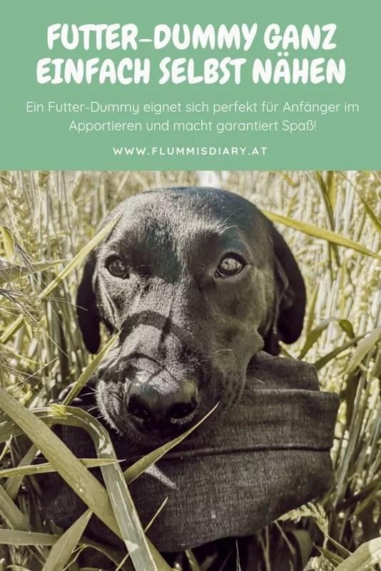 futter-dummy-selbst-naehen
