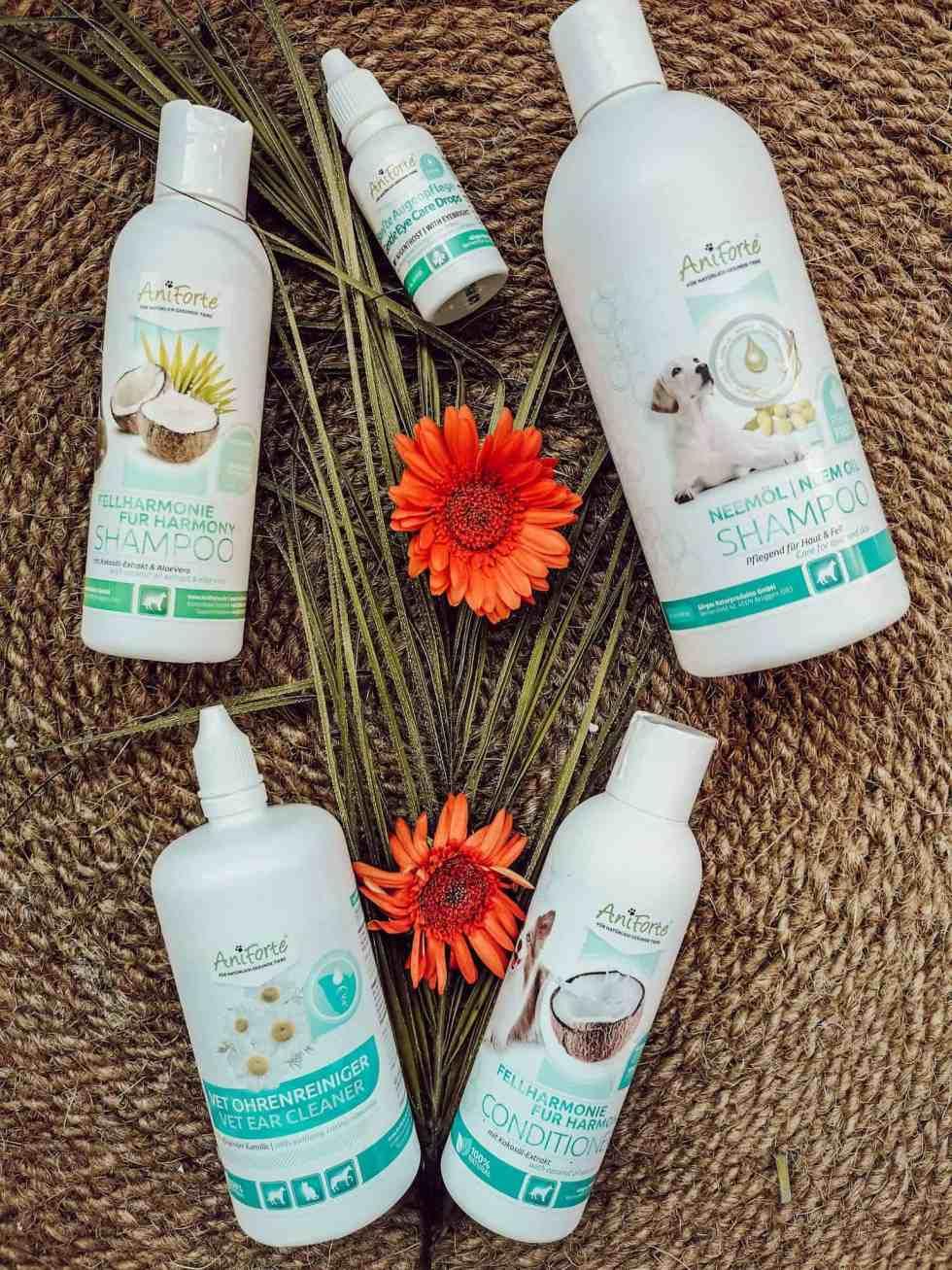 shampoo-hund-ohrenreiniger-aniforte-test