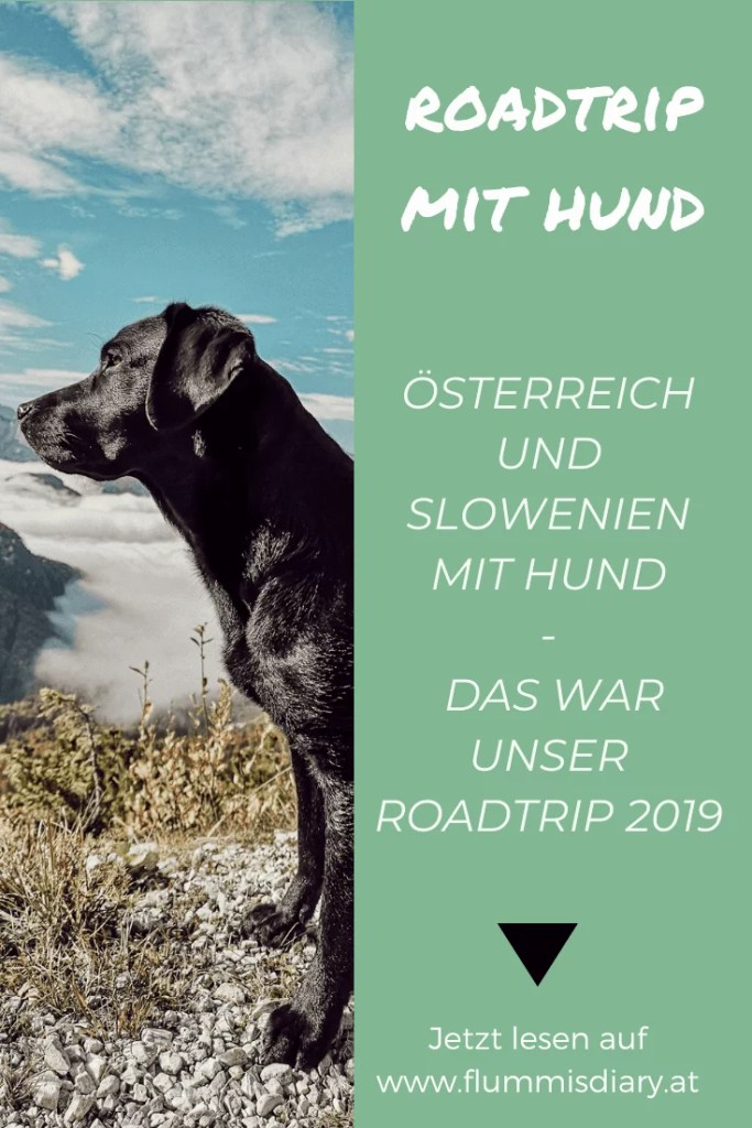 roadtrip-hund-urlaub-holiday-austria-slowenien