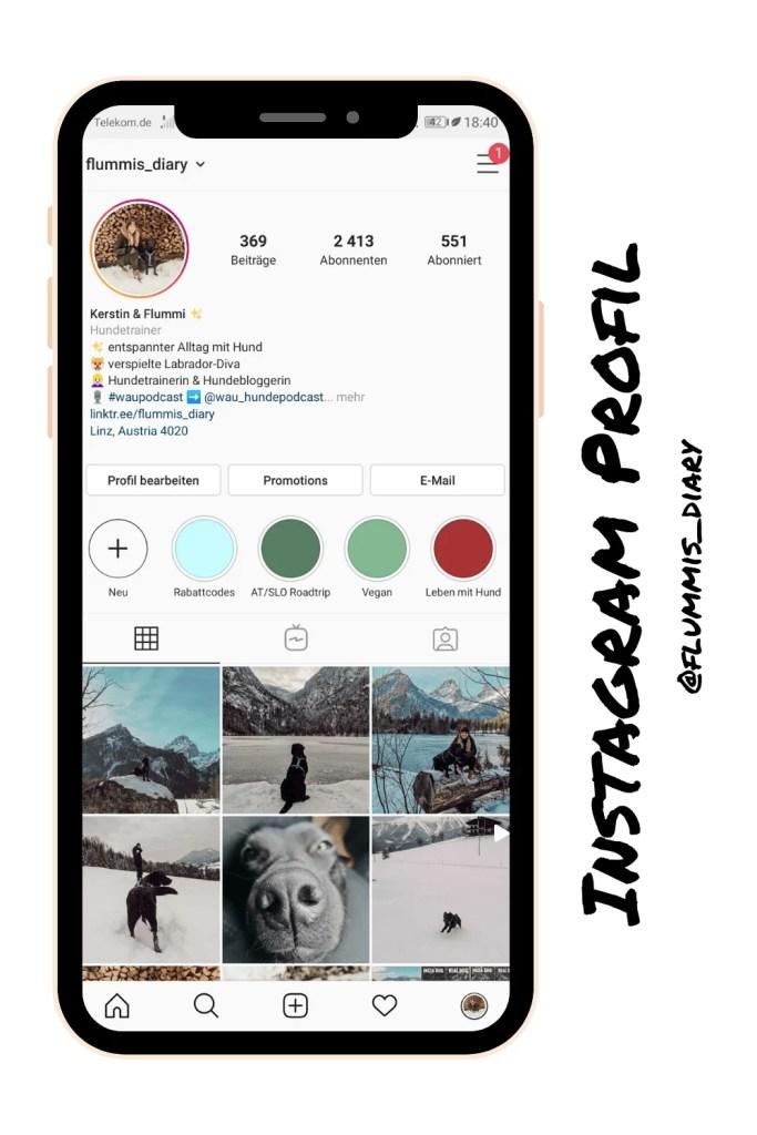 hunde-blogger-instagram-tipps-stories