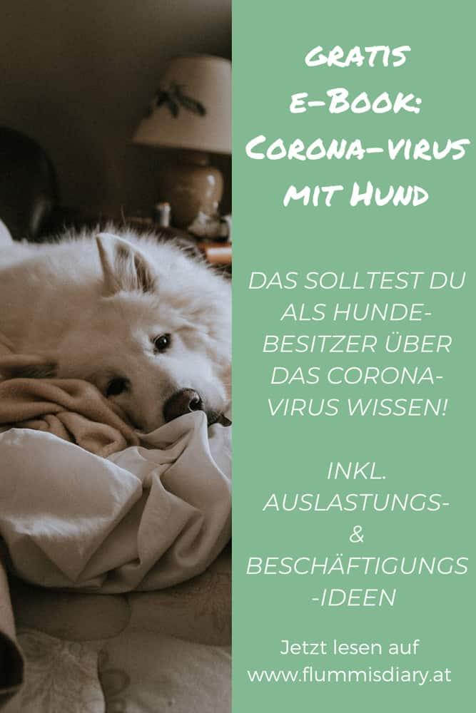 handbuch-corona-virus-coronavirus-auslastung-oesterreich-infos-beschaeftigung
