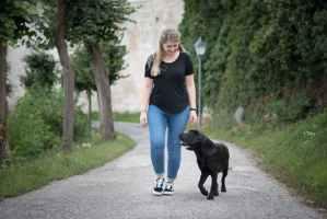 hundetrainer-home-ausbildung-ziemer-falke-erfahrungen-erfahrungsbericht
