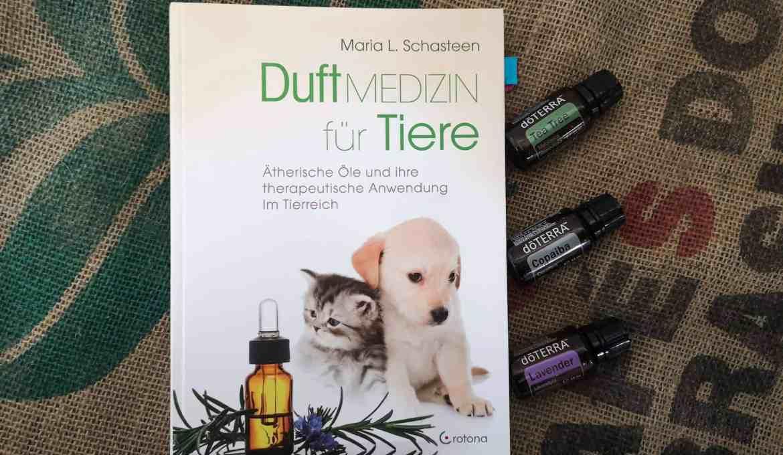 duftmedizin-fuer-tiere-aromaoele-essential-oils-hund