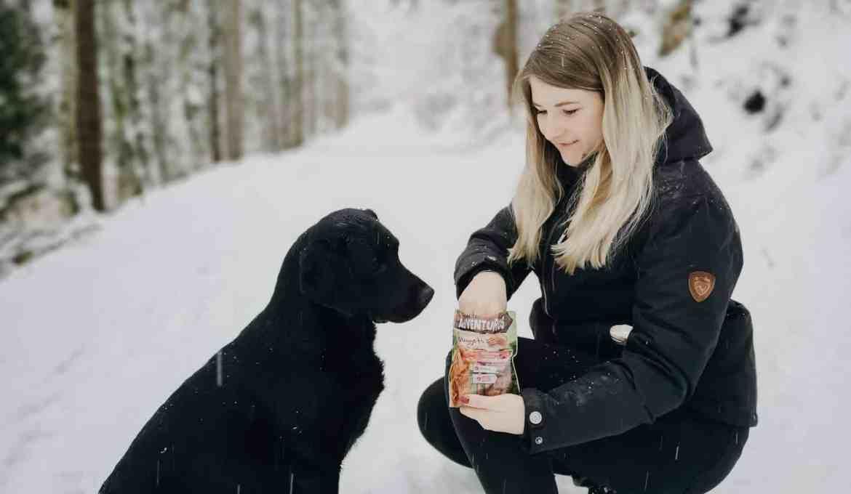 winterwanderung-schaffersee-oberoesterreich-mit-hund-tipps