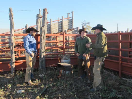 CowboysLaughing