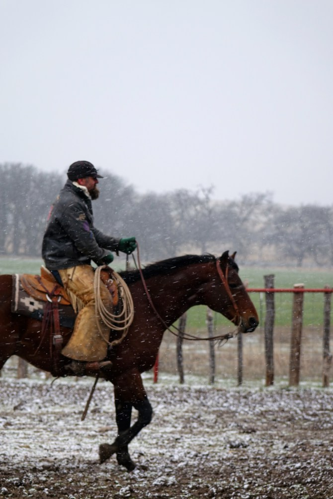 Freezing, Northern Blasts of Snow Leave Texas!