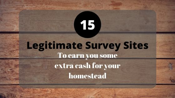 Legitimate Survey Sites