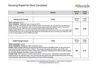 Servicing Report Page1
