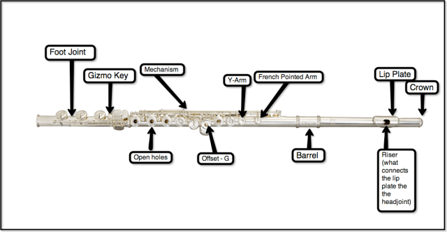 Parts of the flute! | The Life of the Flute Player