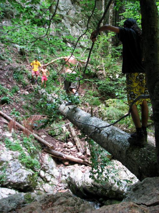 trekking Muntii Apuseni