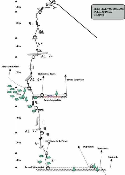 topo Traseul Policandrul, Peretele Vulturilor
