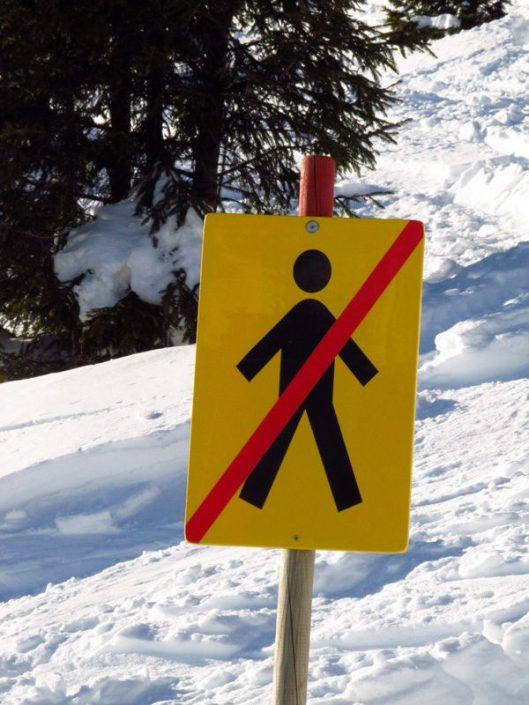 schi pe partia noua din sinaia