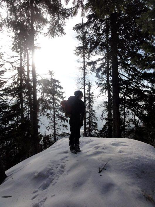 traseul albisoara crucii iarna, caraiman