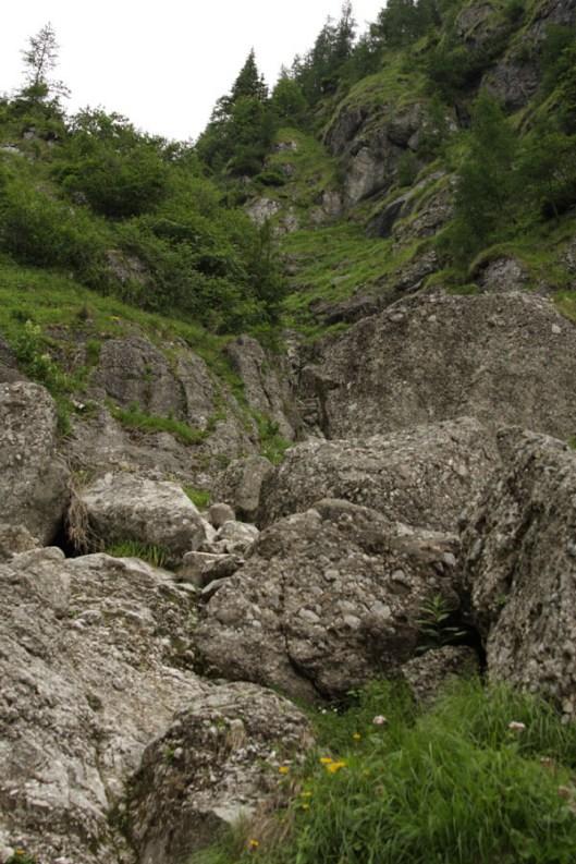 Valea Morarului vara