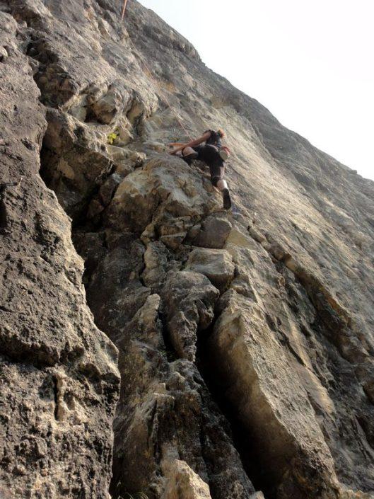 faleza belvedere_escalada paraul rece