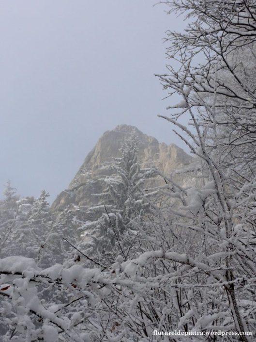 peretele vulturilor iarna zapada